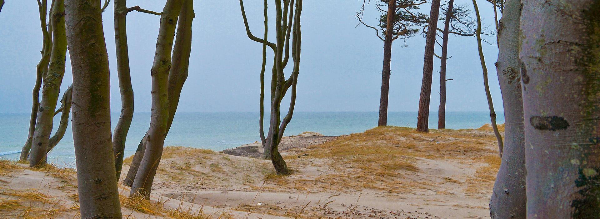 strand-an-der-ostsee